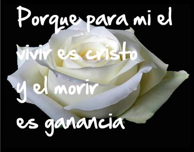 imagenes de rosas con frases de luto cristianas