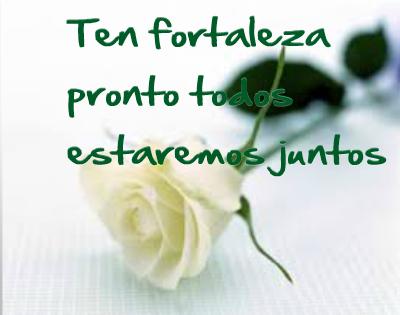 rosas blancas con frases