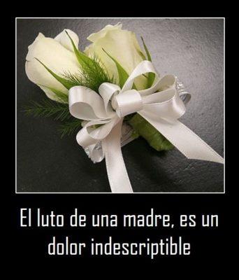 rosas blancas para luto de una madre