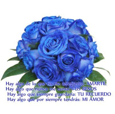 flores-azules-con-frases-de-amor