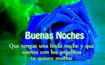 imagenes-de-buenas-noches-con-rosas-azules