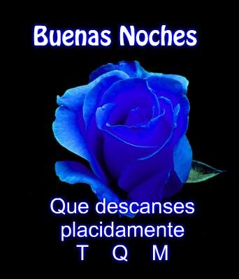 imagenes-de-rosas-azules-con-frases-de-buenas-noches