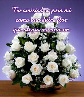 Imágenes De Ramos De Rosas Blancas Con Frases De Amor
