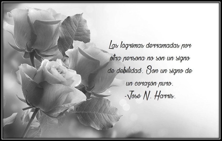 Best Imagenes De Rosas Negras Con Frases De Luto Image Collection