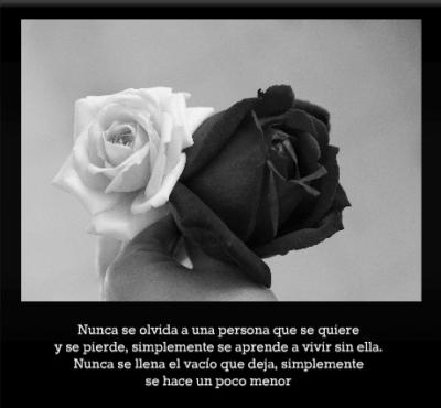 imagenes-de-rosas-negras-con-pensamientos-de-quebranto