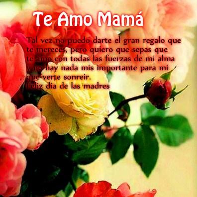 ramos-de-rosas-con-dedicatorias-para-las-madres
