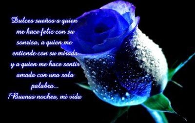 rosas-azules-buenas-noches-mi-vida