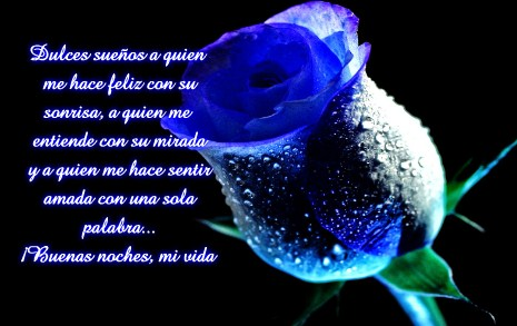 Hermosas Imágenes De Rosas Azules Con Frases De Buenas Noches