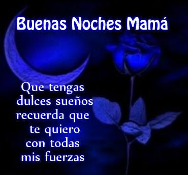 rosas-azules-de-buenas-noches-madre