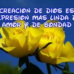Preciosas Imágenes De Rosas Con Frases Cristianas