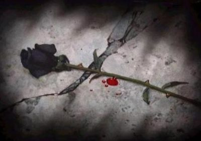 fotos-de-rosas-negras-con-sangre
