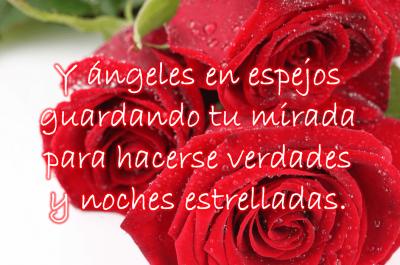 imagenes-de-rosas-con-poemas