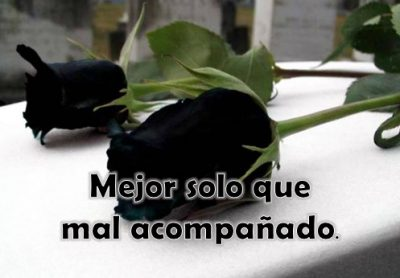 rosas-negras-con-frase-de-desamor