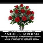 Fantásticas Imágenes De Rosas Con Frases Bonitas Para Todos