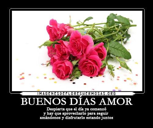 imagenes de rosas con frases de buenos dias