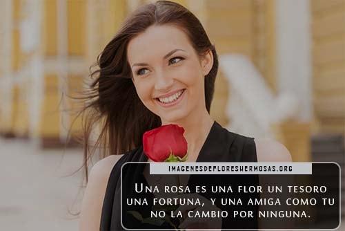 frases para regalar una rosa a una mujer