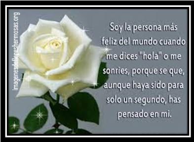 descargar imágenes de rosas blancas con frases de amor