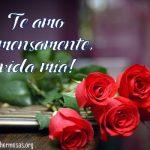 Imágenes De Rosas Con Frases De Te Amo Para Dedicar