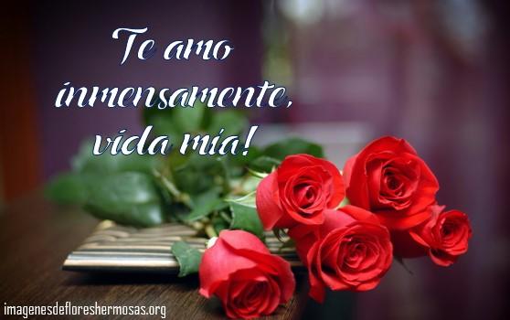 Imágenes de rosas con frases de te amo