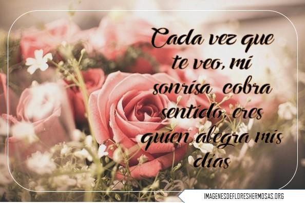 Lindas Imágenes De Rosas Para Expresar Tus Sentimientos