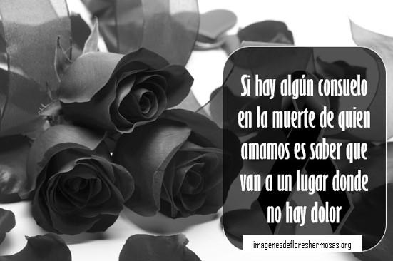 Rosas negras con frases de luto