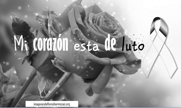 Imagenes De Flores Negras De Luto Tristeza Duelo Y Pesar