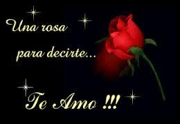 rosas rojas para decir te amo