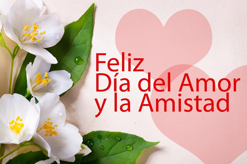 flores bonitas del dia del amor y la amistad