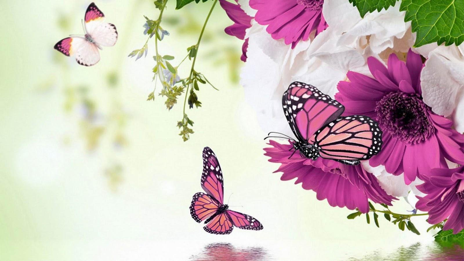 flores con mariposas para fondo de pantalla