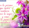 imagenes de flores con frases bonitas
