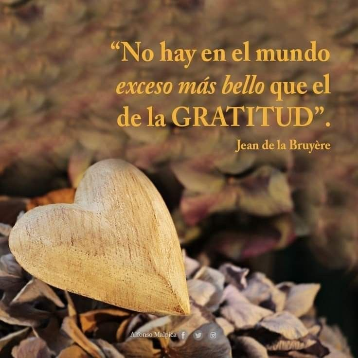 El exceso más bello del mundo es la gratitud