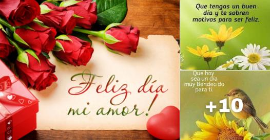 imagenes de flores con mensajes de buenos dias